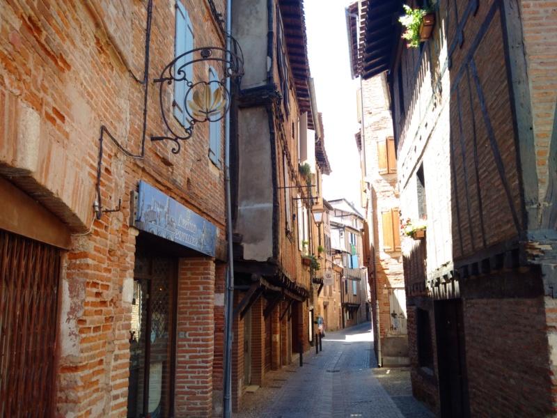 Albi & Castelnau-de-Montmiral (Tarn) Albi_r10
