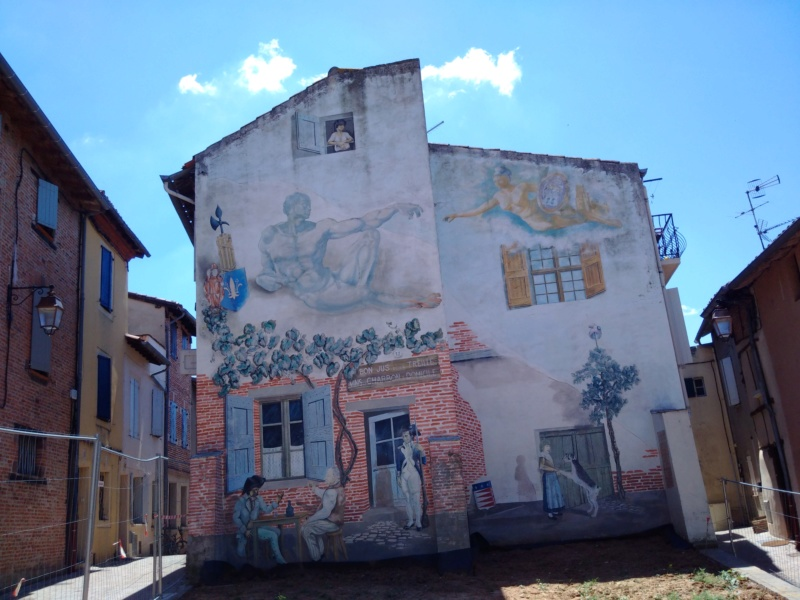 Albi & Castelnau-de-Montmiral (Tarn) Albi_u12