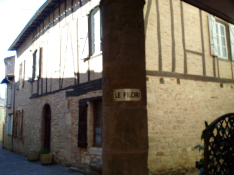 Albi & Castelnau-de-Montmiral (Tarn) Castel15