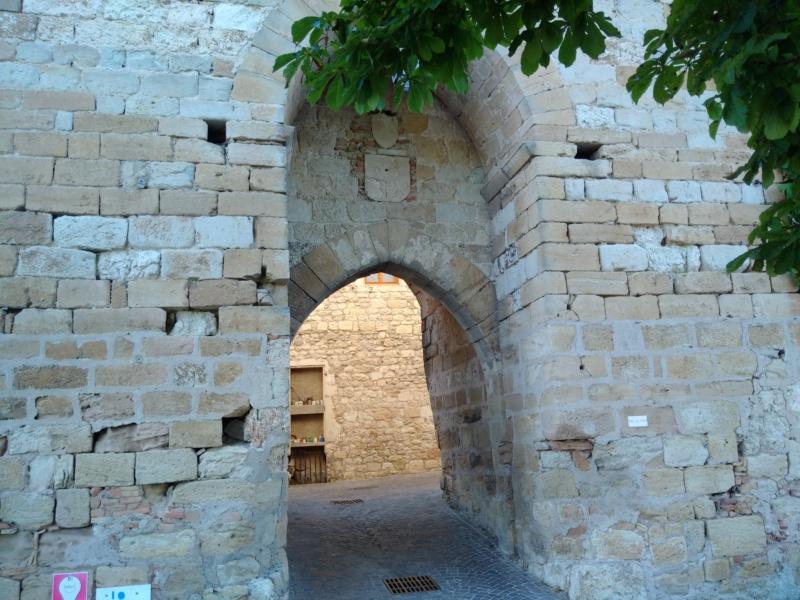 Albi & Castelnau-de-Montmiral (Tarn) Castel17