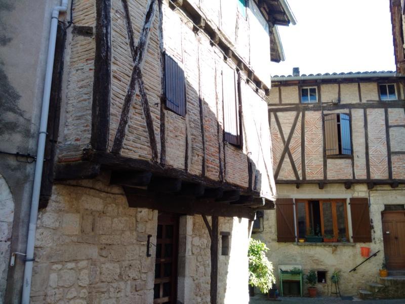 Albi & Castelnau-de-Montmiral (Tarn) Castel19