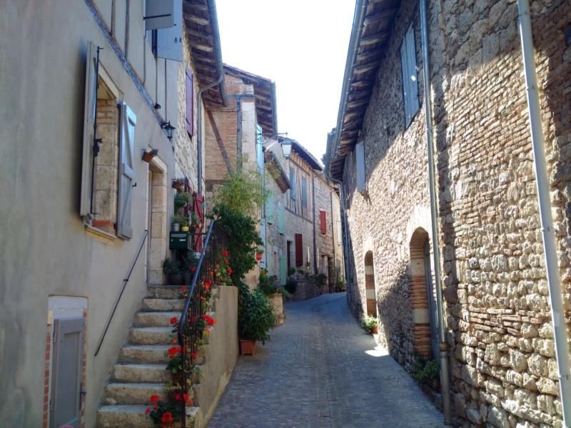 Albi & Castelnau-de-Montmiral (Tarn) Castel20
