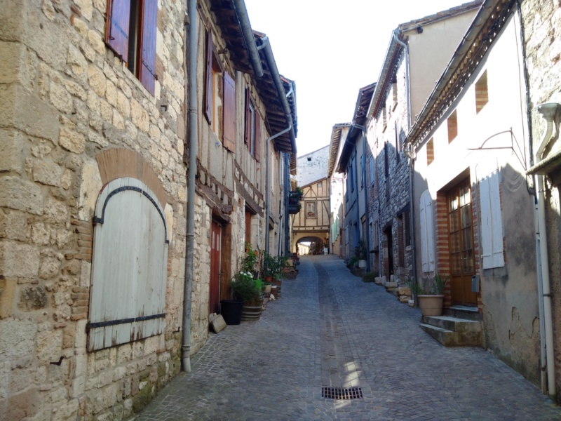 Albi & Castelnau-de-Montmiral (Tarn) Castel22