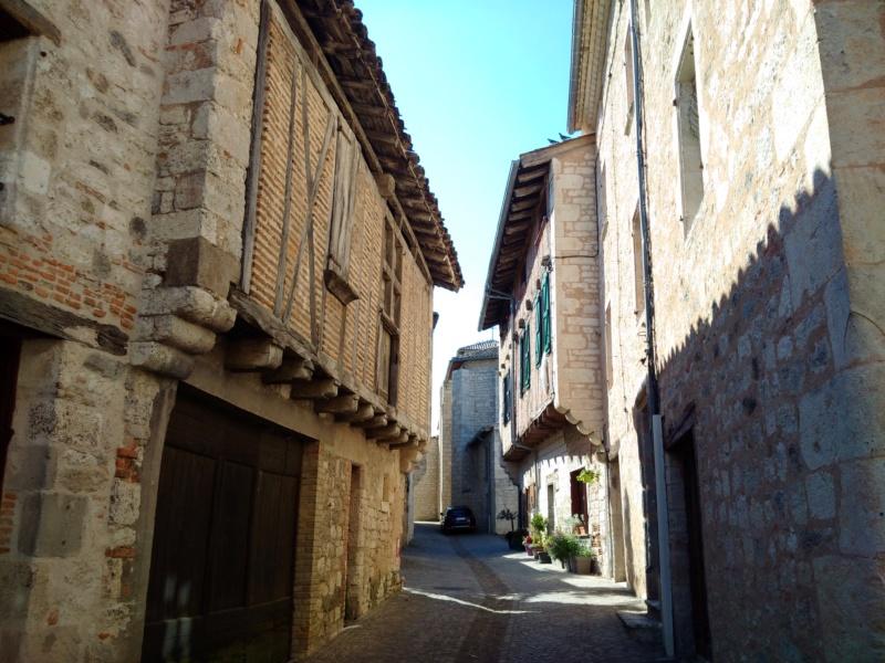 Albi & Castelnau-de-Montmiral (Tarn) Castel23