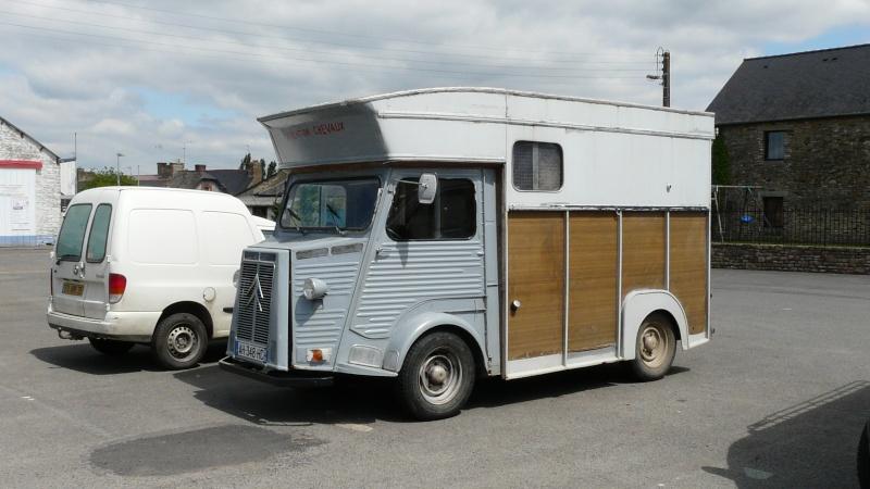 Présentation : hy van à chevaux P1020110