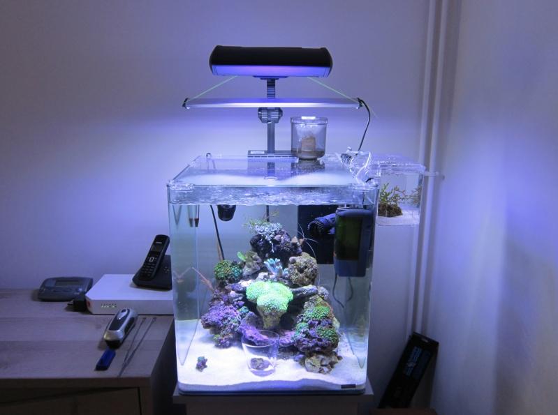 Nano eau de mer - Page 2 Img_0918