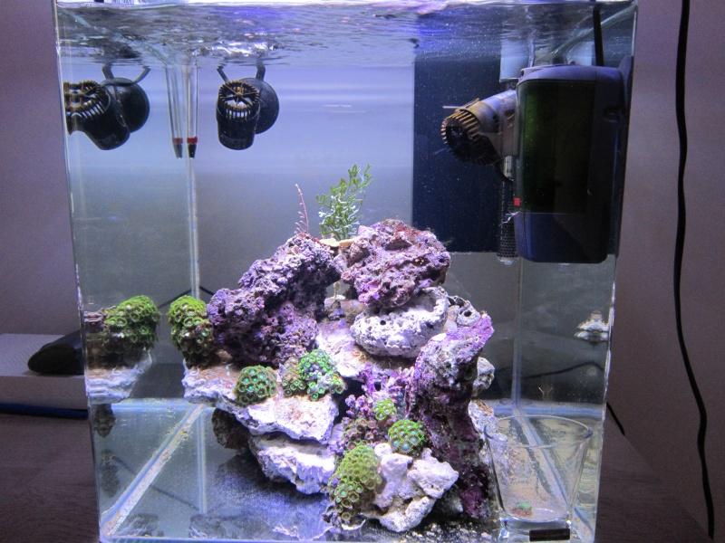 Nano eau de mer Semain10