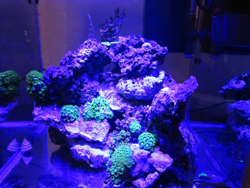 Nano eau de mer Semain12