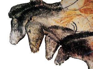 Emission sur ARTE l'homme et dieux des cavernes Chauve10