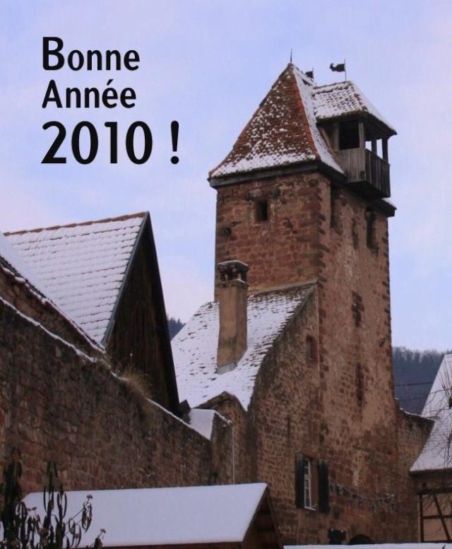 Bonne Année 2010 Bonne_10