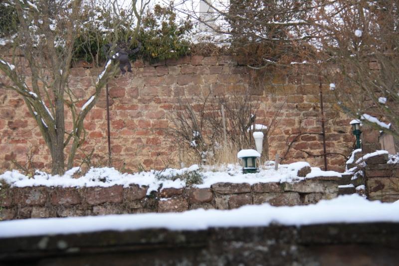 Vive la neige à Wangen ! Img_7818