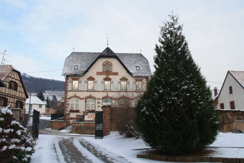 Vive la neige à Wangen ! Img_7916