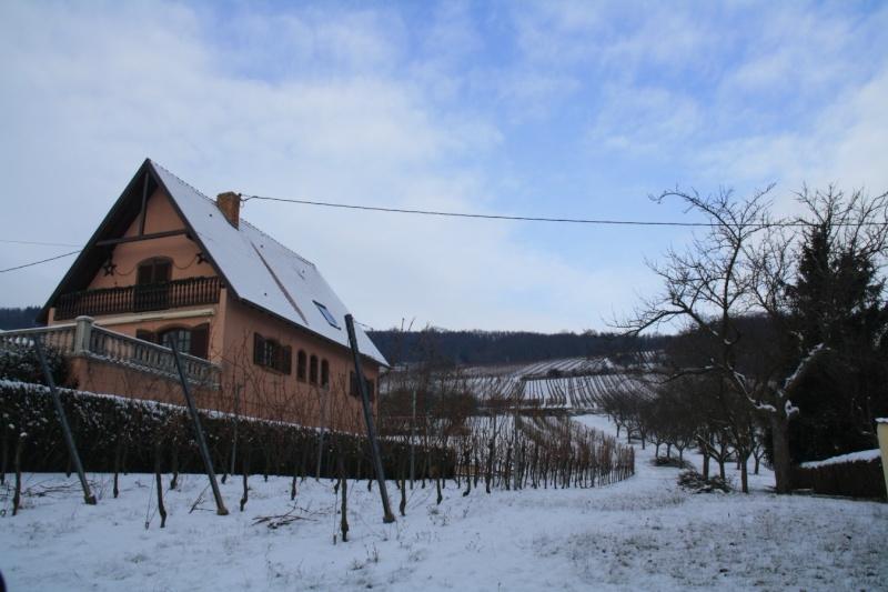 Vive la neige à Wangen ! Img_7917