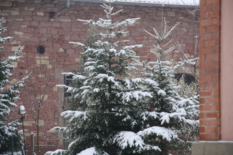 Vive la neige à Wangen ! Img_7946