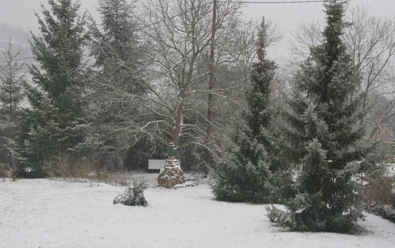 Vive la neige à Wangen ! Img_8110