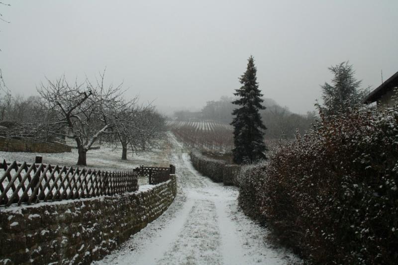 Vive la neige à Wangen ! Img_8112