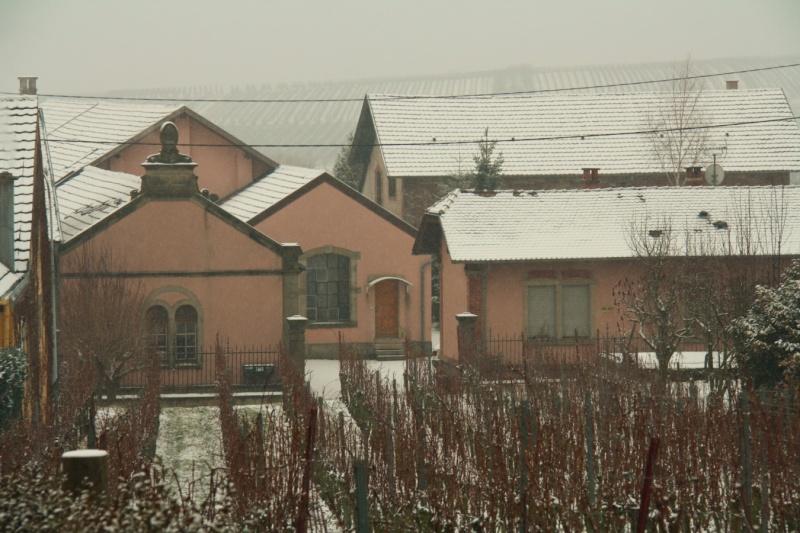 Vive la neige à Wangen ! Img_8114
