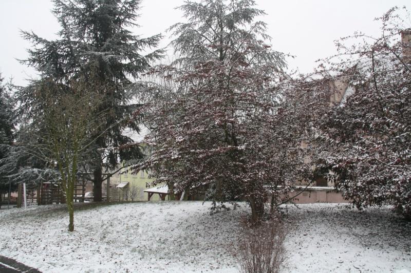 Vive la neige à Wangen ! Img_8116