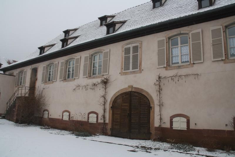 Vive la neige à Wangen ! Img_8117