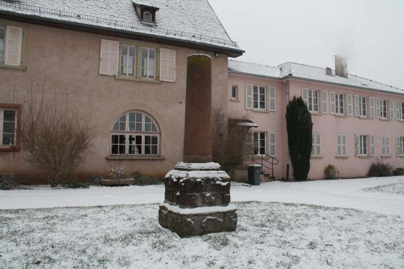 Vive la neige à Wangen ! Img_8118