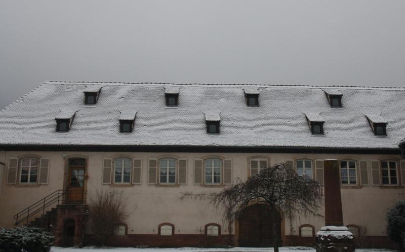 Vive la neige à Wangen ! Img_8121