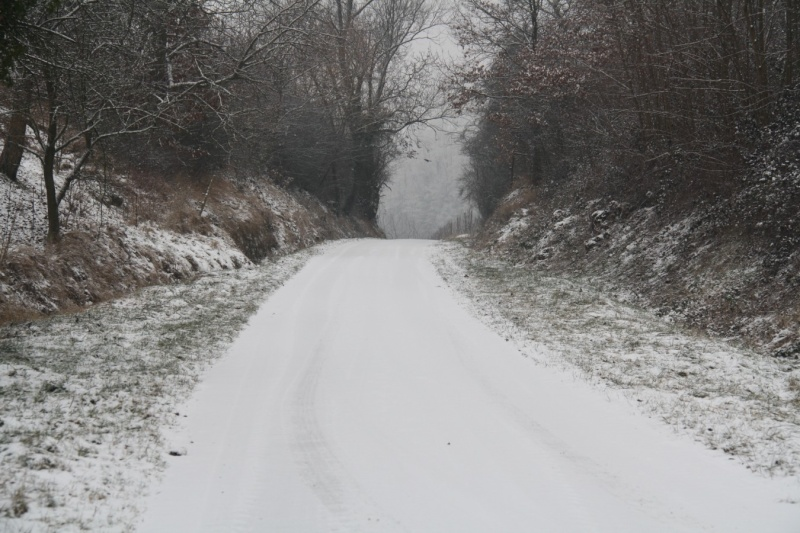 Vive la neige à Wangen ! Img_8127