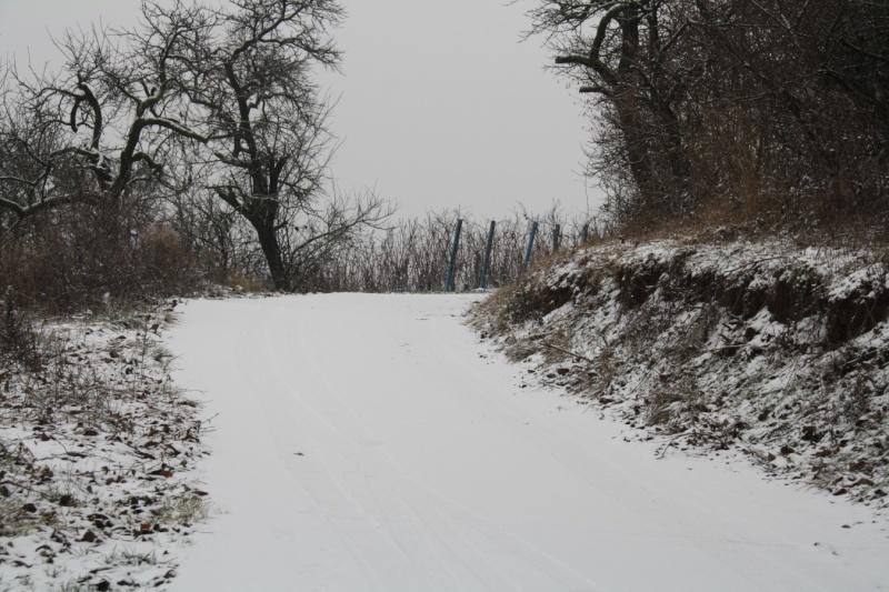 Vive la neige à Wangen ! Img_8128