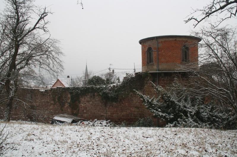 Vive la neige à Wangen ! Img_8210