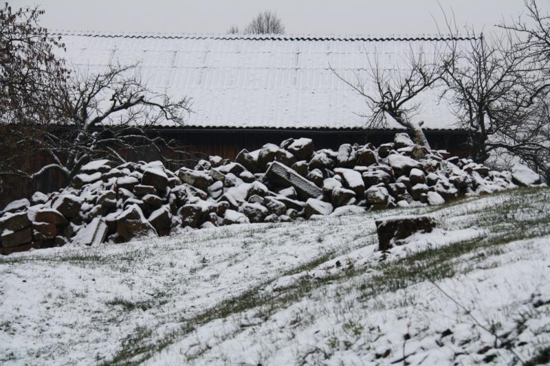 Vive la neige à Wangen ! Img_8212