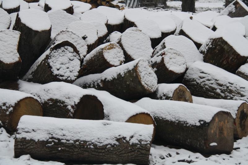 Vive la neige à Wangen ! Img_8214