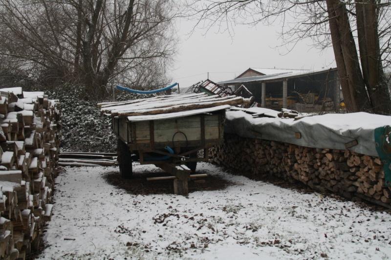 Vive la neige à Wangen ! Img_8219