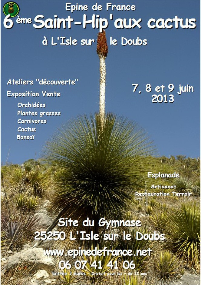 2013 : Cap sur les tropiques avec la Saint-Hip'aux cactus 710