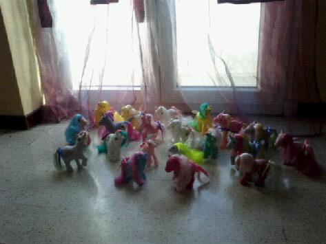 Ma collection Mon Petit Poney G1 puis G5 Photo067
