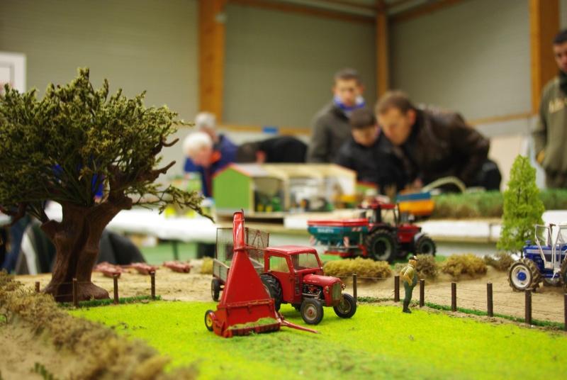 5ème exposition de miniatures de Bretagne, Plourin-Lès-Morlaix 03/01/2010 - Page 4 Imgp7912