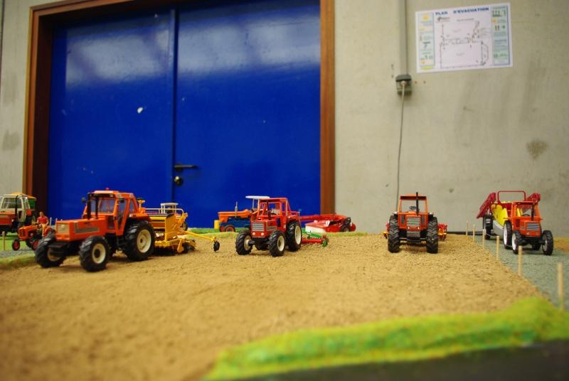 5ème exposition de miniatures de Bretagne, Plourin-Lès-Morlaix 03/01/2010 - Page 4 Imgp8013