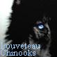 Louveteaux Chinook