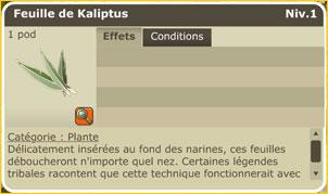 Les Dragodindes Feuill10