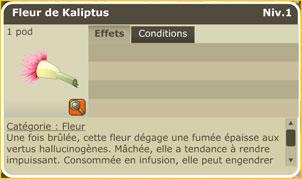 Les Dragodindes Fleurk10