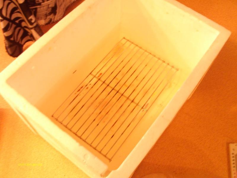 fabrication d un incubateur Imag0012
