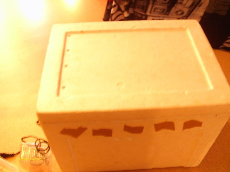 fabrication d un incubateur Imag0016