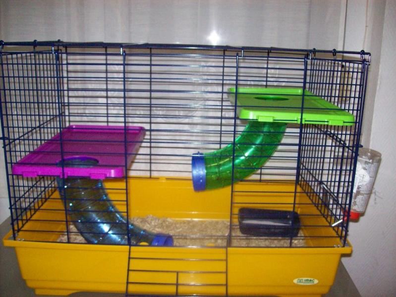 Cage pliante (5 rats) imac a 45e (photo en bas page 2)59NORD 101_1516