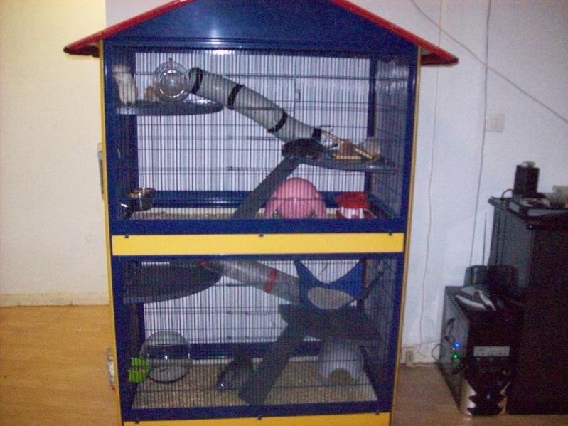 1 voliere double et une cage en exelent etat petits prix (Nord) 101_1524