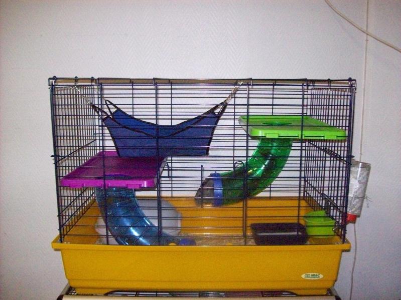 Cage pliante (5 rats) imac a 45e (photo en bas page 2)59NORD 101_1525