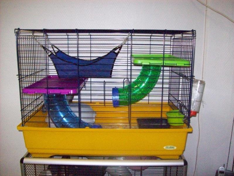 Cage pliante (5 rats) imac a 45e (photo en bas page 2)59NORD - Page 2 101_1529