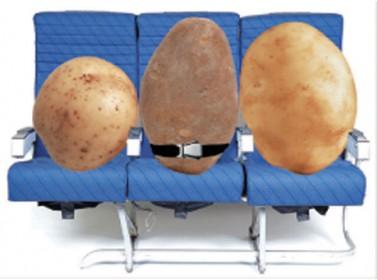البطاطا لإختبار الإنترنت على الطائرات 18649610