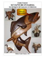 nouveau livre intarsia Couver10