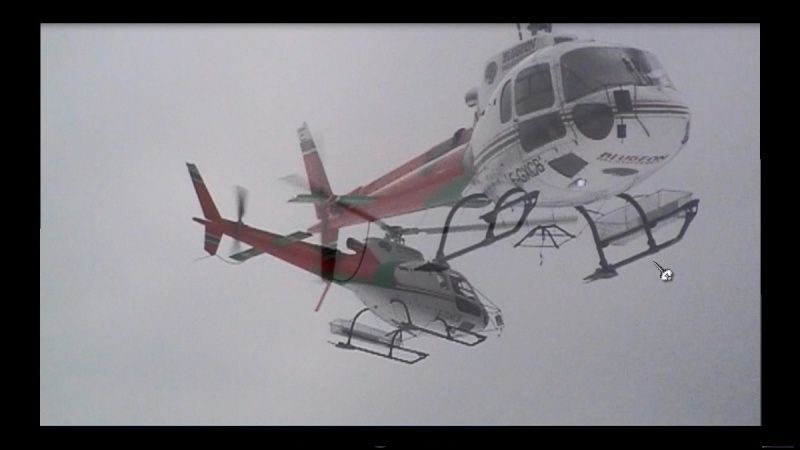 AS 350 BLUGEON Hélicoptères Classe 700 Blugeo11