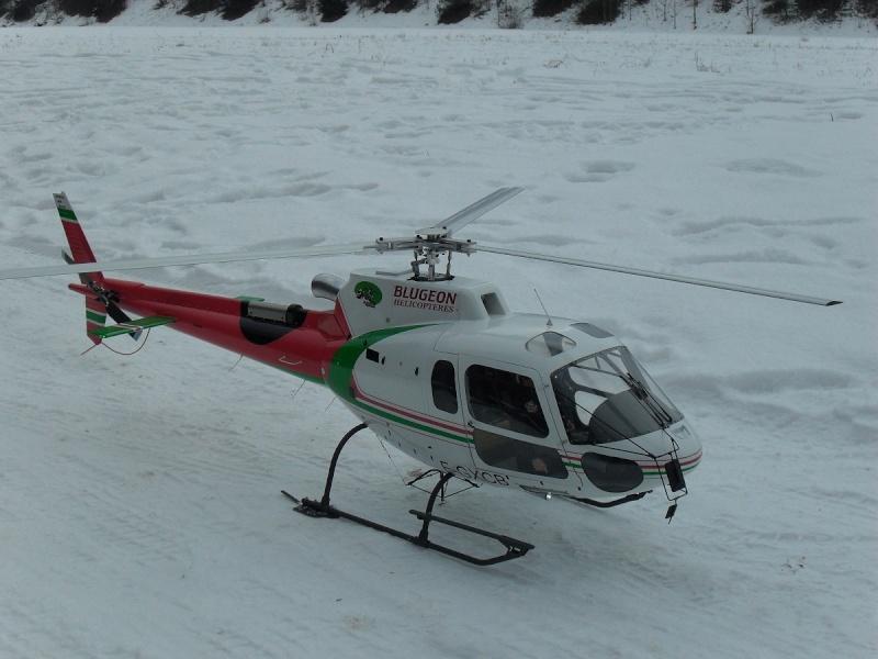 AS 350 BLUGEON Hélicoptères Classe 700 Sdc15713