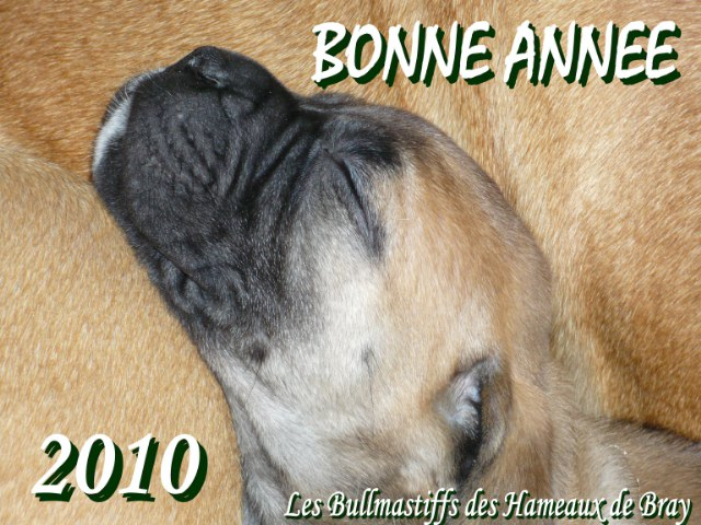 BONNE ANNEE 2010 !!! Voeux11