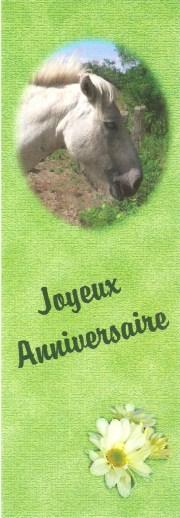 Joyeuses Fêtes en Marque Pages - Page 2 031_1810